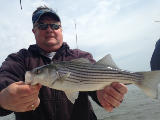 Reel fantasea fishing charters light tackle striped bass for Barnegat inlet fishing report