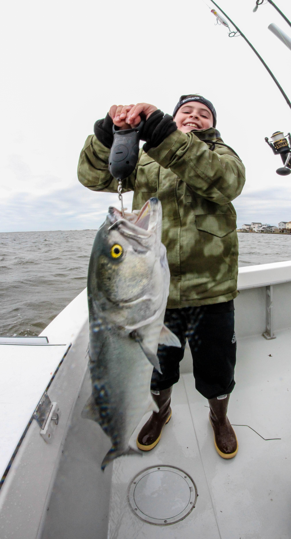 Lighthouse sportfishing barnegat bay report 5 1 2017 lbi for Barnegat bay fishing