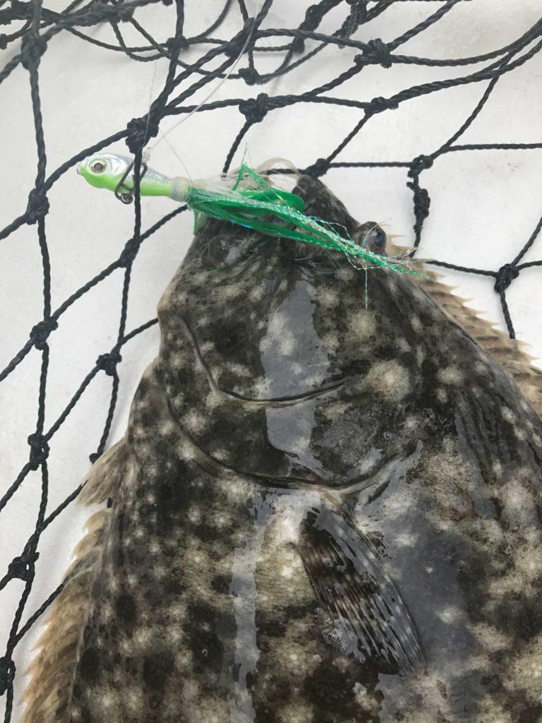 2018 Nj Fluke Fishing Regulations Summer Flounder Lbi